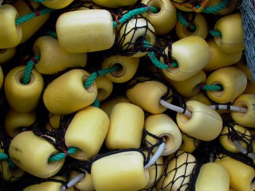 Filets
